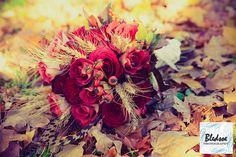 Joyce's bridal is loving this bouquet idea for a fall wedding...we also love the photography of the bouquet in the fall leaves!!!