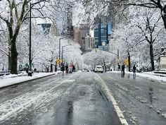 Central Park with snow NYC.