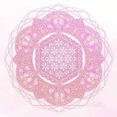 Lotus Mandala Blume des Lebens heilige Geometrie