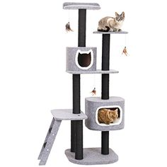 price error * Want additional info? Click on the image. (This is an affiliate link) #CatActivityTrees