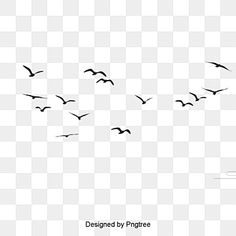 bird migration,海鸥剪贴画,飞鸟群飞剪影,birds,birds clipart,flock,bird,flying bird,seagulls,bird silhouette,black bird Cartoon Birds, Funny Birds, Flying Bird Silhouette, Icon Png, Bird Clipart, Paint Vector, Bird Sketch, Bird Migration, Dslr Background Images