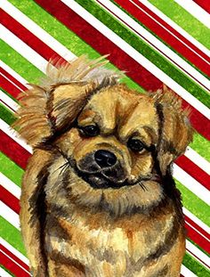 Caroline's Treasures LH9259GF Tibetan Spaniel Candy Cane Holiday Christmas Flag, Small, Multicolor ** A special product just for you. See it now! : Garden Christmas Decorations