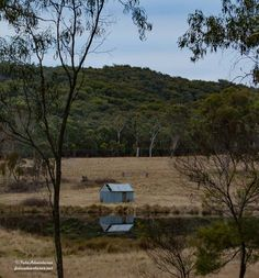 Reflections #aussiesheds #tinsheds #rural_love #ruralnsw #ruralexploration