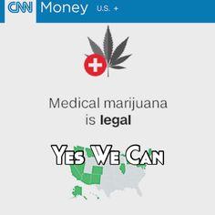 #YesWeCan #Orlando #Nashville #LA #All50 #Cannabis #Business #IOT #iG #RT #2016 #socialmedia #MassCommunication #Worldwide by djrt