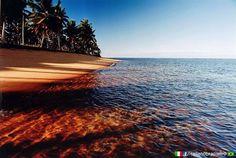 #Praia do #Espelho - #Curuípe ( #Bahia ) www.italianobrasileiro.com
