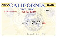 Blank State Id Templates Pdf - Yahoo Image Search Results throughout Blank Drivers License Template - Best Templates Ideas For You Dmv Drivers License, Drivers License California, Drivers License Pictures, Drivers Permit, Driver's License, License Plates, Payroll Template, Money Template, Id Card Template