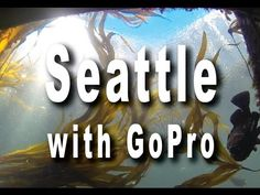 """Seattle - Travel With """"GOPRO"""" - YouTube"""