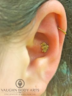 Haley had Cody pierce her conch and we just can't get over how cute it looks! She picked out one of these adorable 14k yellow gold Bees from LeRoi. Thanks so much, Haley! @vaughnbodyarts​ Monterey, CA