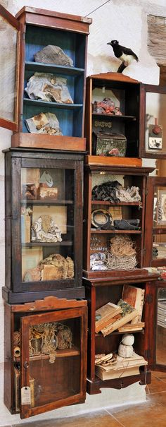 Stacked glass front cabinets - Inspiration organization at the Carol Hicks Bolton Studio-photographed by Anne Lorys Cabinet Of Curiosities, Natural Curiosities, Tattoo Studio, Curiosity Shop, Displaying Collections, Natural History, Art Studios, Vintage Decor, Decoration