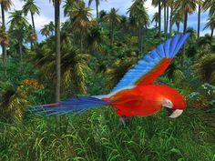Rainforest - Animals - Dynamic 2 Moms