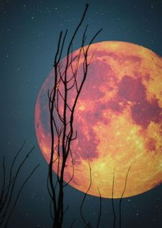 awesome moon....