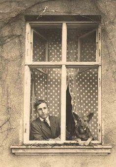 A man, a dog, a window...