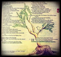Isaiah 11:1-2. The Branch of the stump of Jesse with the Holy Spirit resting on the Branch.