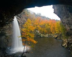 One of my favorite places on earth.  Petit Jean in Arkansas by Tim Ernst