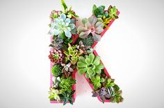 20 Ways to Spruce Up Your Decor With Succulents via Brit + Co.