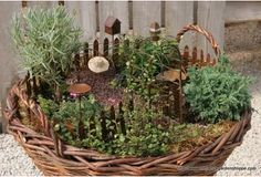 Basket as container for fairy garden (inspiration - this one is for sale)