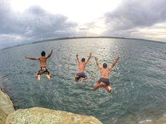 Free State, Windsurfing, Cliff, Fly Fishing, Shots, Wildlife, Take That, Twitter, Fun