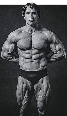 Arnold Schwarzenegger Blueprint Trainer: Mass Training Overview