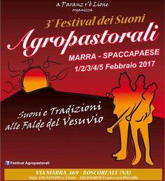 Mancano meno di due settimane al 3° Festival dei suoni Agropastorali, direi che ci siamo! Si, parlo al plurale… Perché benché non faccia direttamente parte dell'organizzazione, …