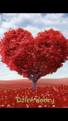 Wow these are really lovely Valentines Day Heart Love Pictures. If you want to make your valentine awesome than share this post with your valentine partner. I am sure he or she will be your valentine. Must share. Birthday Greetings, Birthday Wishes, Happy Birthday, Living Simple Life, Heart Tree, Heart Wreath, Narcissistic Abuse, Birthday Quotes, Gratitude