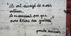 proverbe mexicain 6 ils ont essayé de nous enterrer ; ils ne savaient pas que nous étions des graines - quand le street art rend hommage aux victimes des attentats de Paris