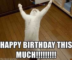 Funny Happy birthday meme for herYou can find Happy birthday meme and more on our website.Funny Happy birthday meme for her