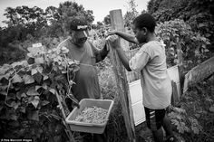 Forgotten people of the Sea Islands: Poignant photos of Gullah Geechee community shed light on descendants of enslaved Africans whose way of life is now facing extinction - Gullah Geechee living in the Carolinas, Georgia, and Florida are direct descendants of West African Slaves brought across the Atlantic to work on plantations. The Gullah Geechee people speak a unique creole language, have their own folklore and religious customs.