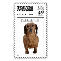 >>>Cheap Price Guarantee          Brown Dachshund Stamps           Brown Dachshund Stamps so please read the important details before your purchasing anyway here is the best buyThis Deals          Brown Dachshund Stamps lowest price Fast Shipping and save your money Now!!...Cleck Hot Deals >>> http://www.zazzle.com/brown_dachshund_stamps-172004384992298048?rf=238627982471231924&zbar=1&tc=terrest