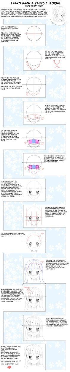 Learn Manga Basics Head Front View Tutorial by *Oceans-Art on deviantART