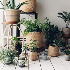 Sisal Woven Basket Natural - The Future Kept - 7