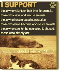 I also support hunt sabs, those that liberate animals from labs and fur farms, etc...  They put themselves at great risk to help the helpless.  They are my biggest heroes!