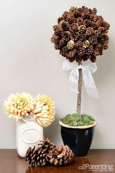 DIY Topiary  : DIY: Make a pretty pine cone topiary