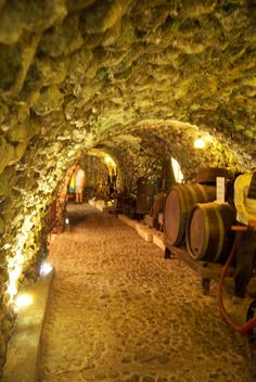 organic-vineyard:  The Wineries of Santorini