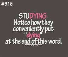 i feel like dying when i study so technically this is soooooo me!