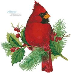 Artecy Cross Stitch. Cardinal and Holly Cross Stitch Pattern to print online.