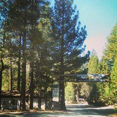 Mono Village ♥ Twin Lakes, Bridgeport CA