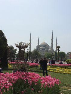 Mesquita Azul, Istambul, Turquia © Viaje Comigo Blue Mosque, Traveling