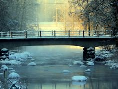 Beautiful morning, frosty and misty ,,,and sun shines. Beautiful Morning, Sunshine, Landscape, Landscaping