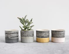 X-small Striped Planter // X-small Striped Tumbler Diy Planters, Ceramic Planters, Cement Pots, Pottery Painting Designs, Pottery Designs, Painted Plant Pots, Clay Pots, Handmade Decorations, Ceramic Pottery