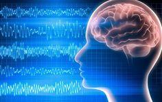 Volgens een nieuw onderzoek, zijn je hersenen nog zeker 10 minuten actief, nadat je bent overleden.Canadese artsen, die in een intensive care unit werken, hebben het brein onderzocht, nada