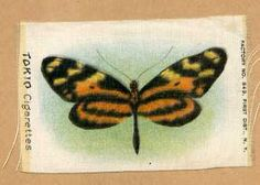 Vintage tobacco cigarette silk - tokio cigarettes- orange longwing butterfly