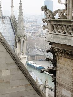 Notre Dame by Fabinho Vilhena. I am mesmerized by this view.  And the gargoyle patiently watches over it all.