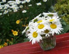Google Image Result for http://www.party-ideas-galore.com/images/daisies-on-picnic-table-2.jpg