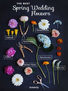Your florist will guide you but here's a select few of spring flowers! www.thebridalbox.co.uk