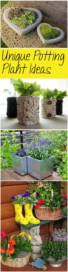 Unique Potting Plant Ideas (blessmyweeds.com). I adore natural fibers. The rope container is my favorite. The material enhances the beauty of the plant and gives it an all over natural, organic look.