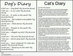 funny ~ I really do hope my cats aren't plotting this way tho'  :)