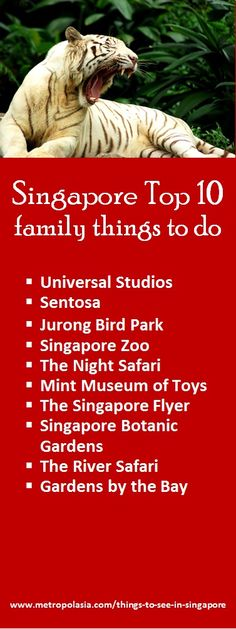 "Singapore has so much to offer to families with kids! Click on the link now to download our free eBook ""Singapore for families with kids"", where you can get detailed info about the city's best family attractions!"