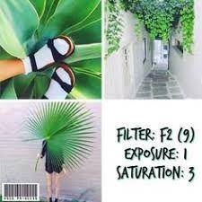 Resultado de imagem para filtros do vsco verde