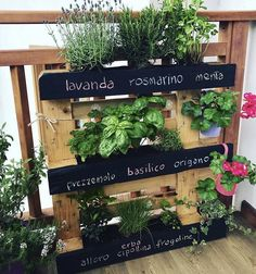 Terrazzo, Green Life, Garden, Pallet, Outdoor Decor, Flowers, Plants, Album, Home Decor