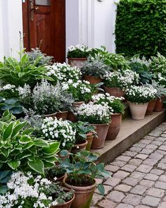 Container gardens make be happy! Claus Dalby has amazing flower garden inspirati. - Container gardens make be happy! Claus Dalby has amazing flower garden inspirati… – - Unique Gardens, Back Gardens, Small Gardens, Beautiful Gardens, Outdoor Gardens, Moon Garden, Dream Garden, Garden Cottage, Garden Pots